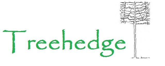 Logo tuincentrum treehedge